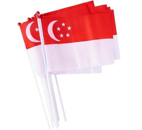 Mini Polyester Hand Shaking Flag For Promotional